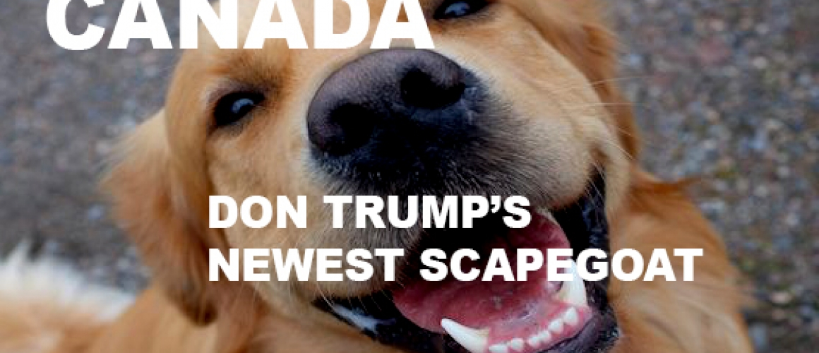 Canada: Don Trump's Newest Scapegoat
